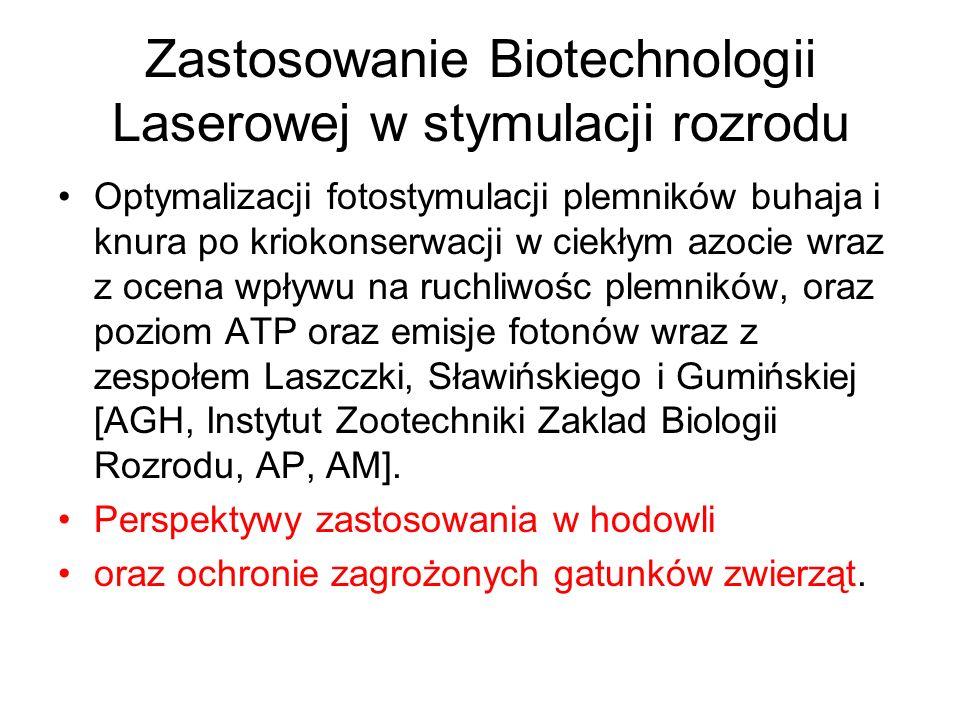 Zastosowanie Biotechnologii Laserowej w stymulacji rozrodu Optymalizacji fotostymulacji plemników buhaja i knura po kriokonserwacji w ciekłym azocie wraz z ocena wpływu na ruchliwośc plemników, oraz poziom ATP oraz emisje fotonów wraz z zespołem Laszczki, Sławińskiego i Gumińskiej [AGH, Instytut Zootechniki Zaklad Biologii Rozrodu, AP, AM].