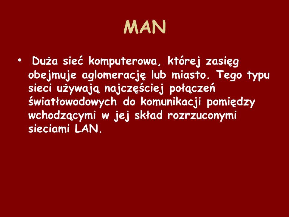 WAN (z ang.