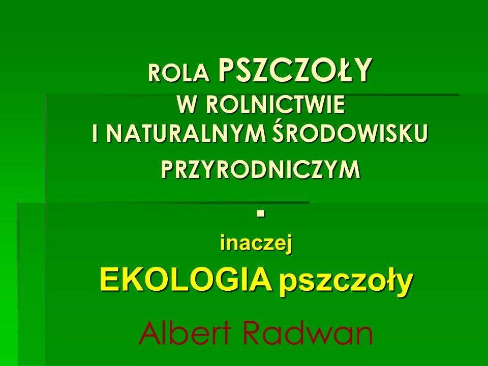 ROLA PSZCZOŁY W ROLNICTWIE I NATURALNYM ŚRODOWISKU PRZYRODNICZYM. inaczej EKOLOGIA pszczoły Albert Radwan