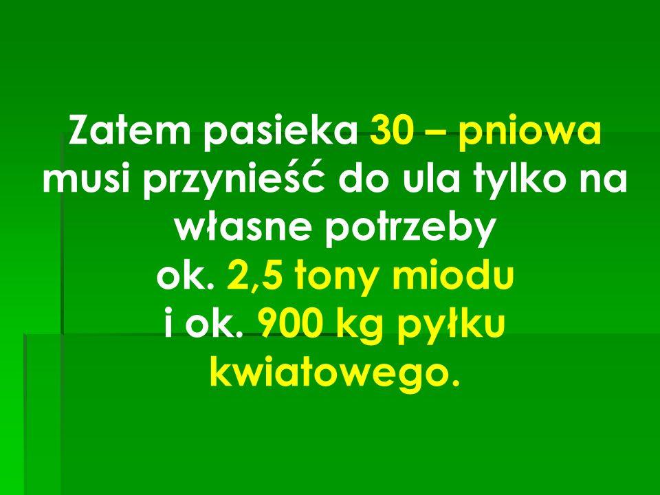 Zatem pasieka 30 – pniowa musi przynieść do ula tylko na własne potrzeby ok. 2,5 tony miodu i ok. 900 kg pyłku kwiatowego.