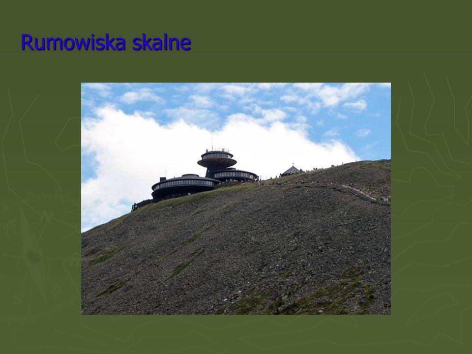 Rumowiska skalne