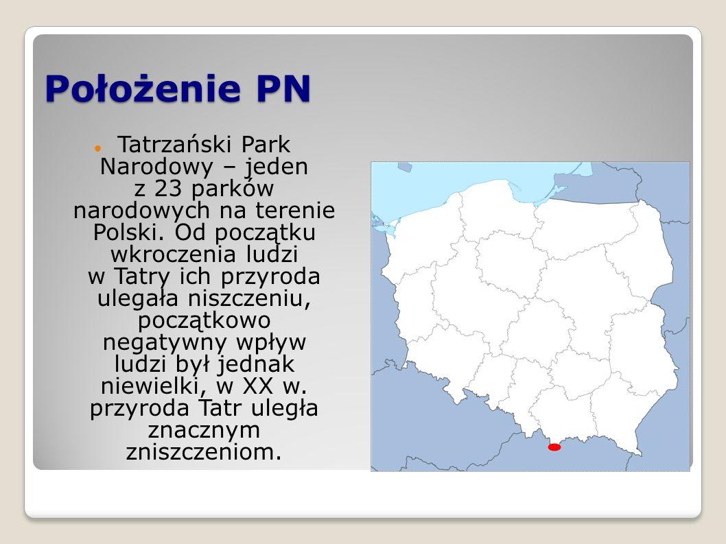 Prezentację wykonała Natalia Wawrzyczek klasa V b
