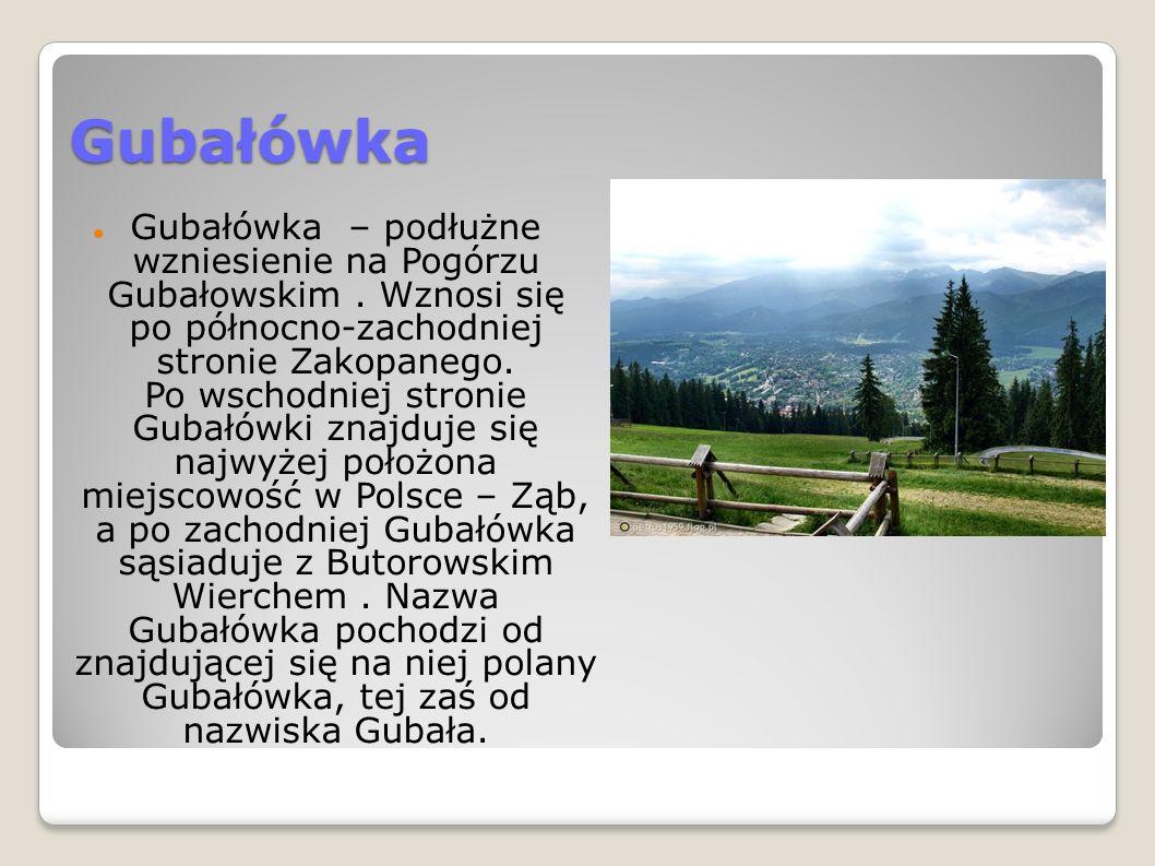 Gubałówka Gubałówka – podłużne wzniesienie na Pogórzu Gubałowskim.
