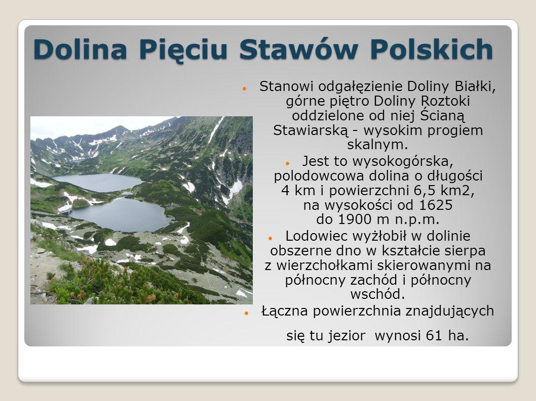 Dolina Pięciu Stawów Polskich Stanowi odgałęzienie Doliny Białki, górne piętro Doliny Roztoki oddzielone od niej Ścianą Stawiarską - wysokim progiem skalnym.