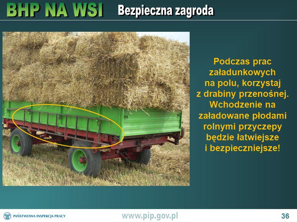 36 Podczas prac załadunkowych na polu, korzystaj z drabiny przenośnej. Wchodzenie na załadowane płodami rolnymi przyczepy będzie łatwiejsze i bezpiecz