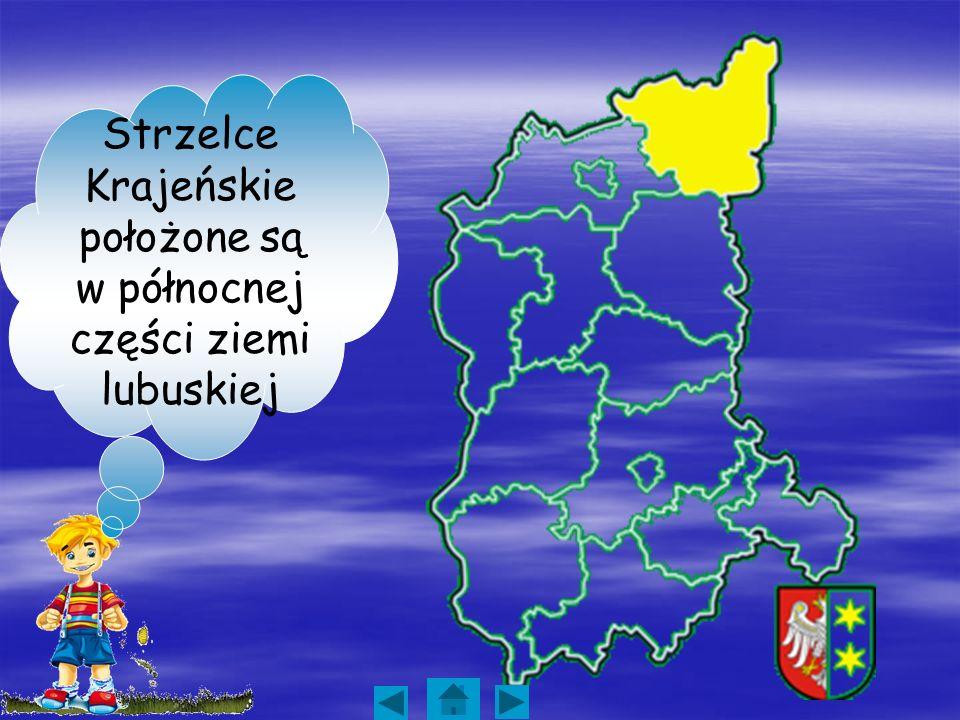 Strzelce Krajeńskie miasto warte zwiedzania Autor: Klasa I B Gimnazjum w Czerwieńsku