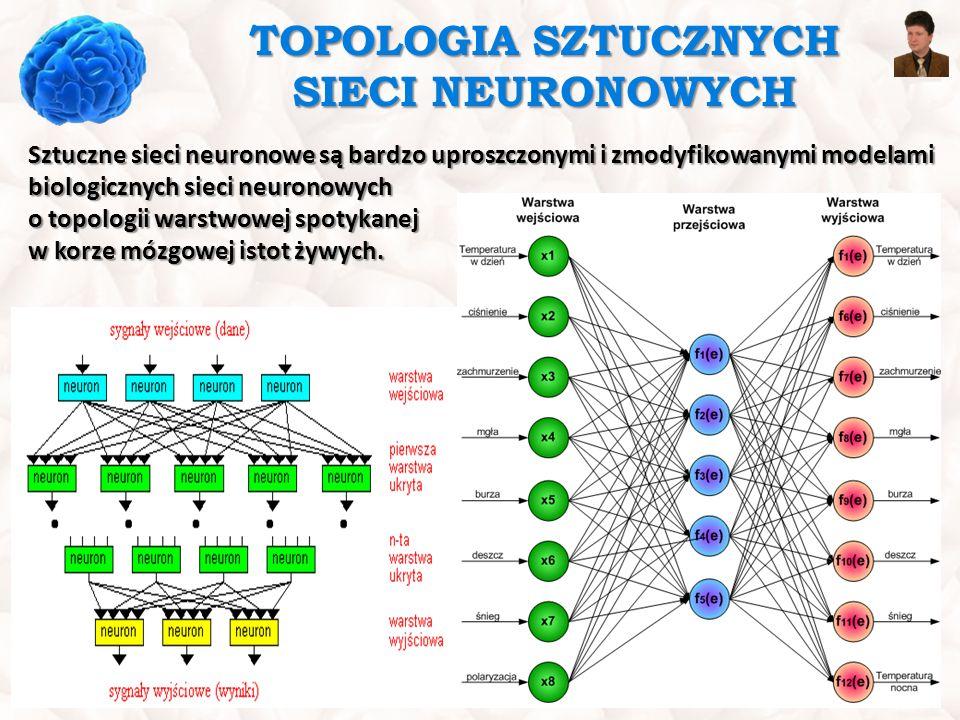 TOPOLOGIA SZTUCZNYCH SIECI NEURONOWYCH Sztuczne sieci neuronowe są bardzo uproszczonymi i zmodyfikowanymi modelami biologicznych sieci neuronowych o t