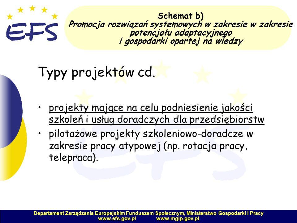 Departament Zarządzania Europejskim Funduszem Społecznym, Ministerstwo Gospodarki i Pracy www.efs.gov.pl www.mgip.gov.pl Schemat b) Promocja rozwiązań systemowych w zakresie w zakresie potencjału adaptacyjnego i gospodarki opartej na wiedzy Typy projektów cd.