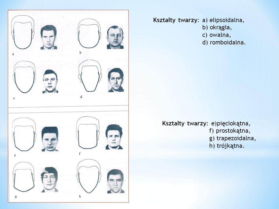 Kształty twarzy: a) elipsoidalna, b) okrągła, c) owalna, d) romboidalna. Kształty twarzy: e)pięciokątna, f) prostokątna, g) trapezoidalna, h) trójkątn