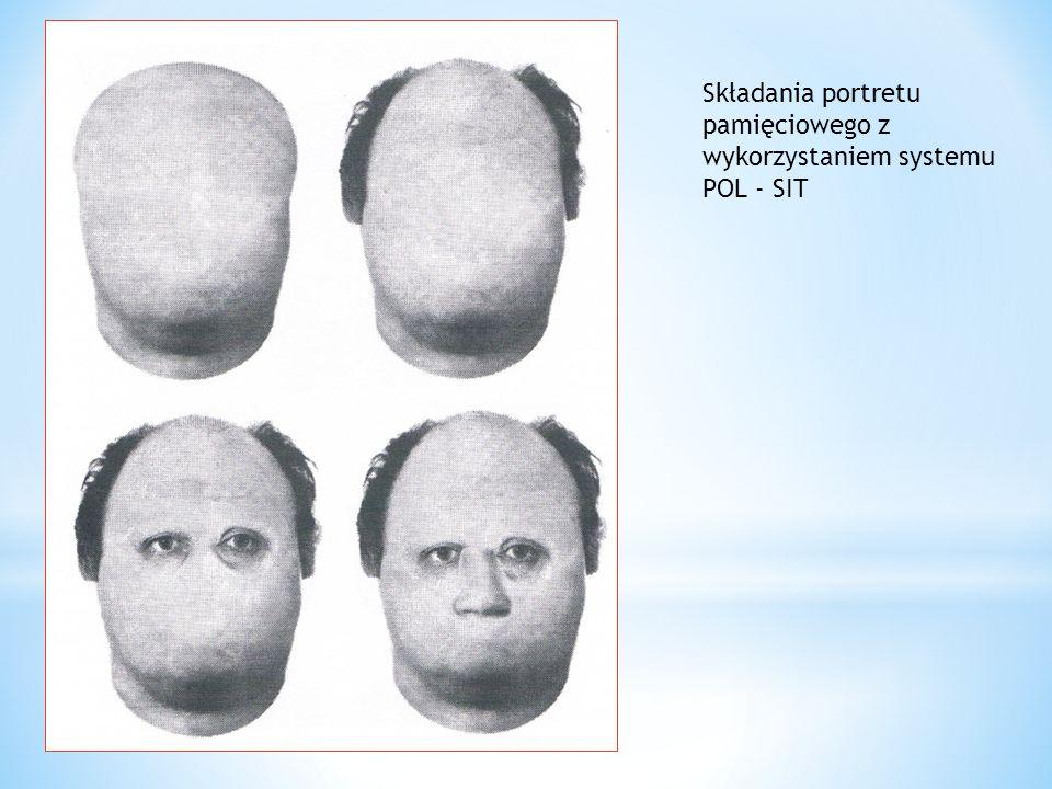 Składania portretu pamięciowego z wykorzystaniem systemu POL - SIT
