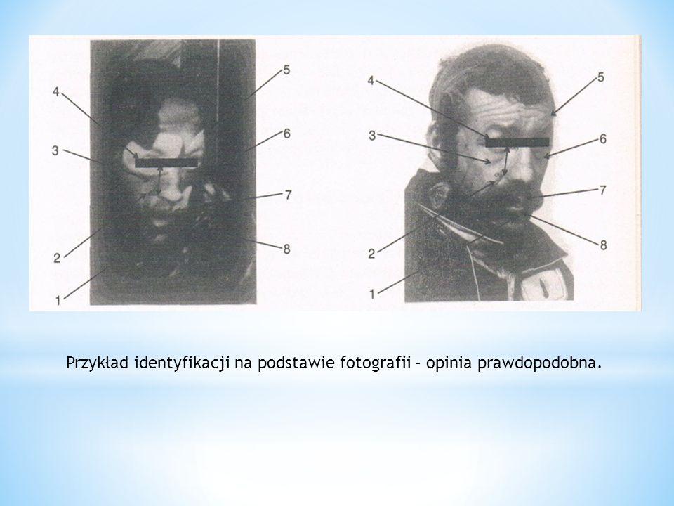 Przykład identyfikacji na podstawie fotografii – opinia prawdopodobna.