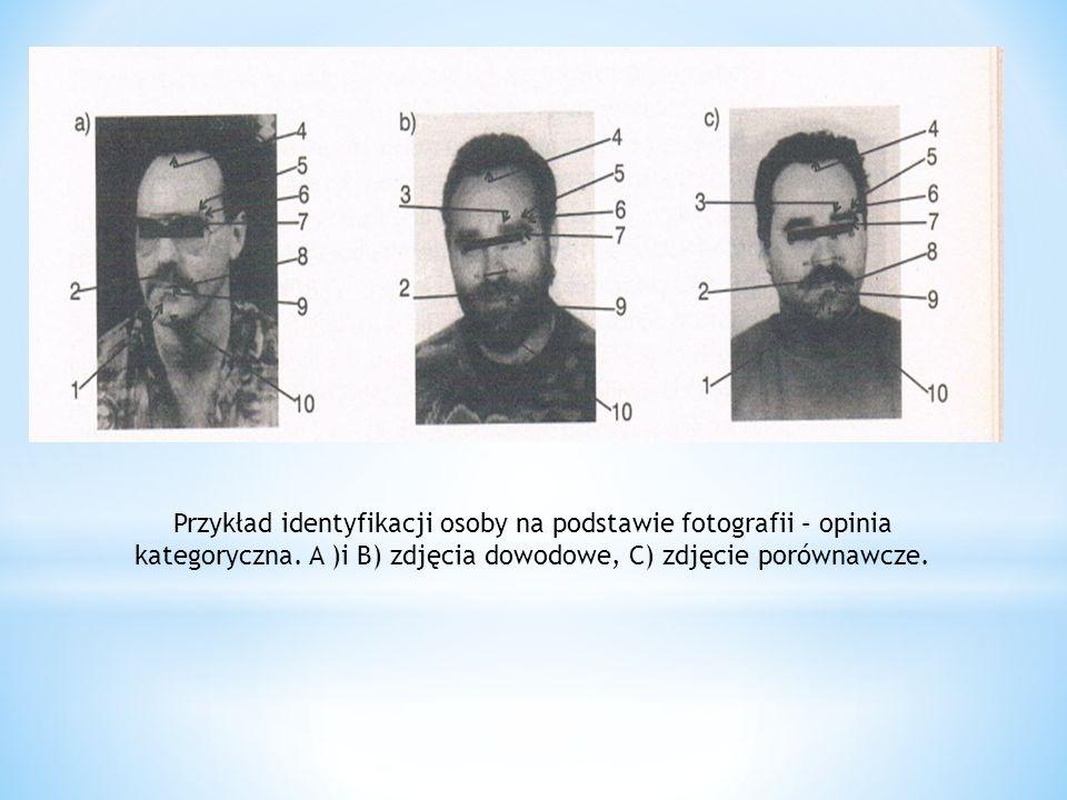 Przykład identyfikacji osoby na podstawie fotografii – opinia kategoryczna. A )i B) zdjęcia dowodowe, C) zdjęcie porównawcze.