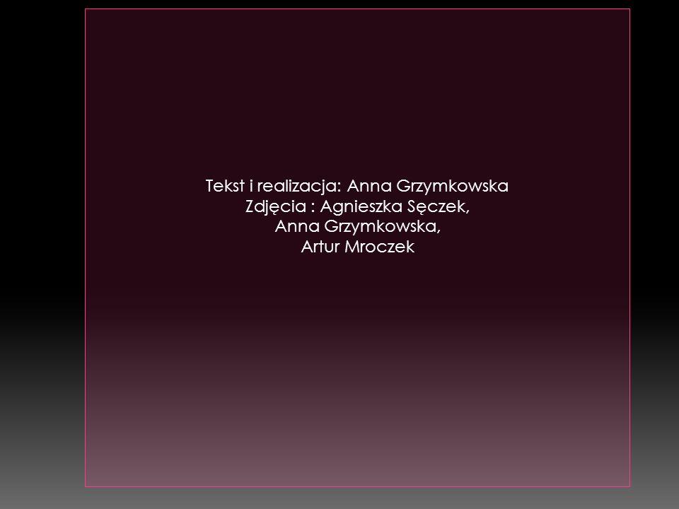 Tekst i realizacja: Anna Grzymkowska Zdjęcia : Agnieszka Sęczek, Anna Grzymkowska, Artur Mroczek