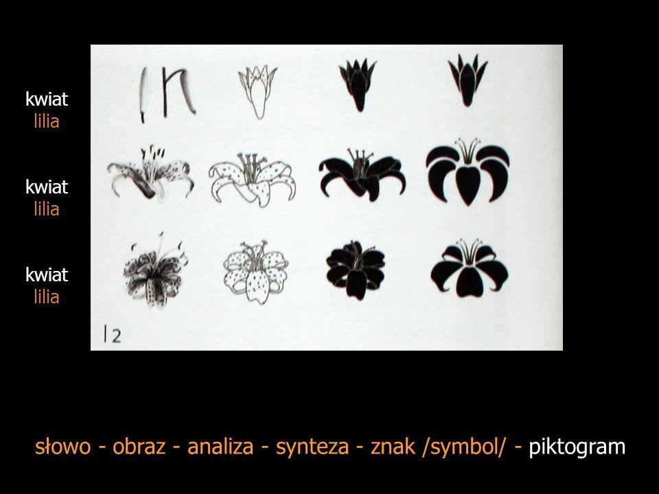 słowo - obraz - analiza - synteza - znak/symbol/ - piktogram żaba żaba wodna żaba rzekotka żaba żaba trawna