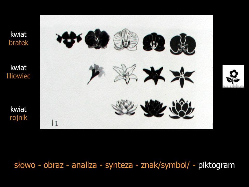 słowo - obraz - analiza - synteza - znak /symbol/ - piktogram kwiat lilia kwiat lilia kwiat lilia