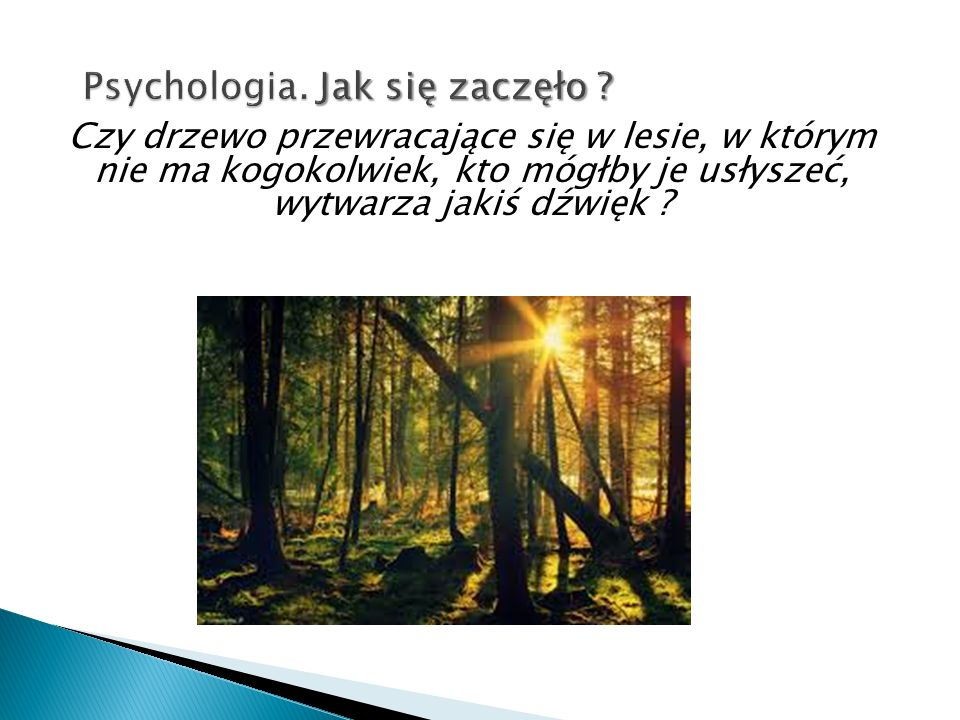 Czy drzewo przewracające się w lesie, w którym nie ma kogokolwiek, kto mógłby je usłyszeć, wytwarza jakiś dźwięk ? supraślak.flog.pl