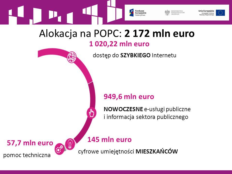 Działania szkoleniowe na rzecz rozwoju kompetencji cyfrowych – 85 mln EUR Innowacyjne rozwiązania na rzecz aktywizacji cyfrowej – 30 mln EUR e–Pionier - wsparcie uzdolnionych programistów na rzecz rozwiązywania zidentyfikowanych problemów społecznych lub gospodarczych – 25 mln EUR Kampanie edukacyjno-informacyjne na rzecz upowszechniania korzyści z wykorzystywania technologii cyfrowych – 5 mln EUR Priorytet III.