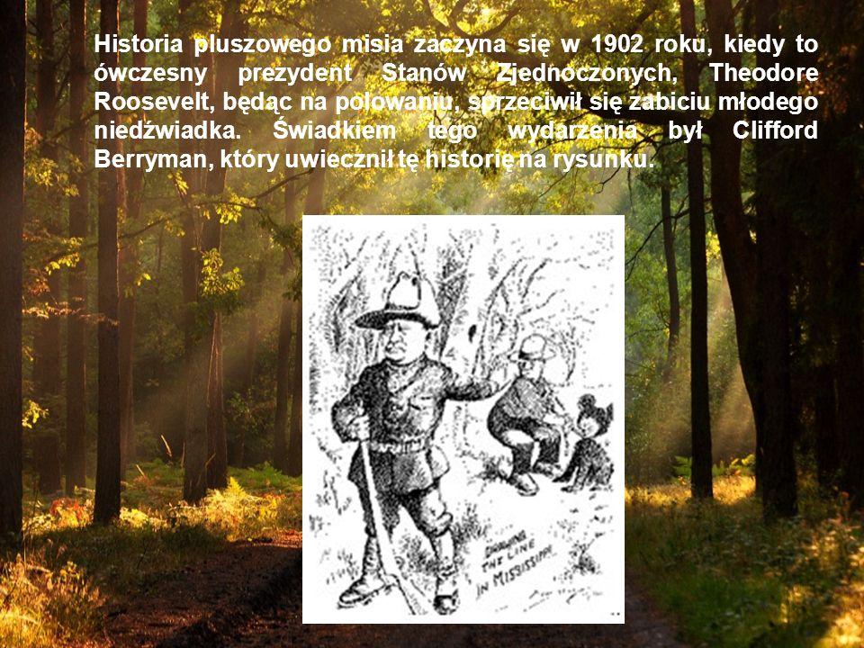 Historia pluszowego misia zaczyna się w 1902 roku, kiedy to ówczesny prezydent Stanów Zjednoczonych, Theodore Roosevelt, będąc na polowaniu, sprzeciwi