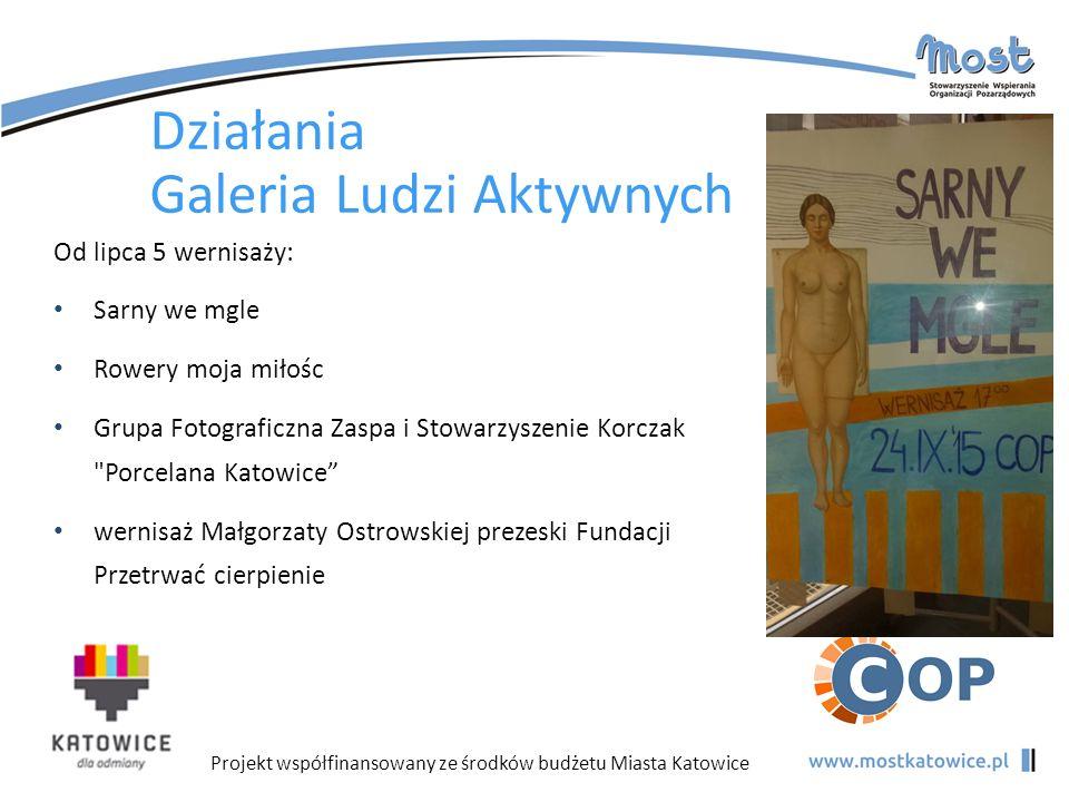 Projekt współfinansowany ze środków budżetu Miasta Katowice Działania Galeria Ludzi Aktywnych Od lipca 5 wernisaży: Sarny we mgle Rowery moja miłośc G