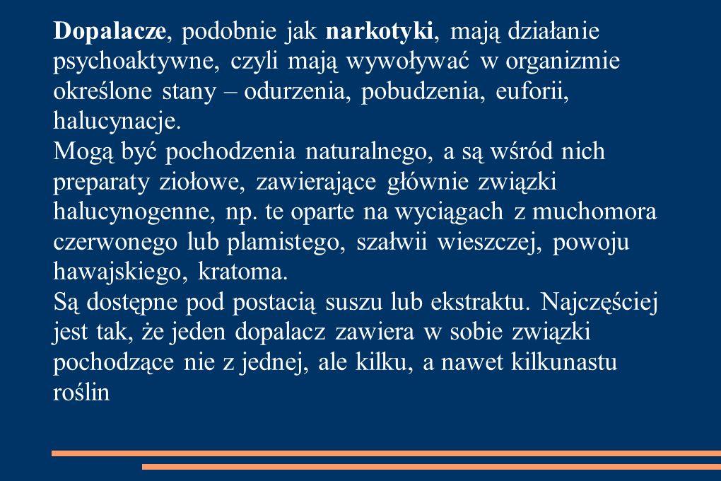 Bibliografia: http://www.poradnikzdrowie.pl http://politykaspoleczna.com/dopalacze-oczy-szeroko-otwarte/ Http://dopalaczeinfo.pl Czym są dopalacze?- prezentacja dr n.