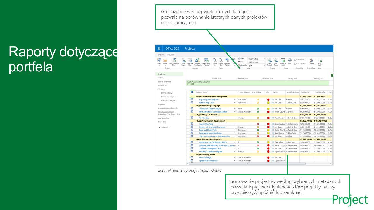 Zrzut ekranu z Grupowanie według wielu różnych kategorii pozwala na porównanie istotnych danych projektów (koszt, praca, etc).