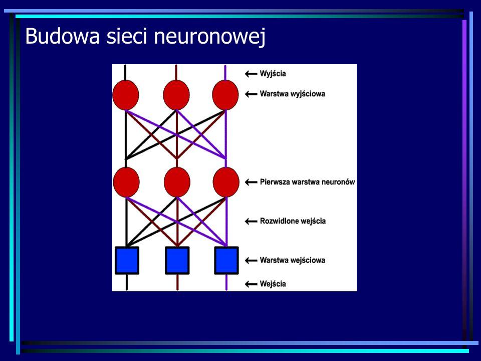 Budowa sieci neuronowej