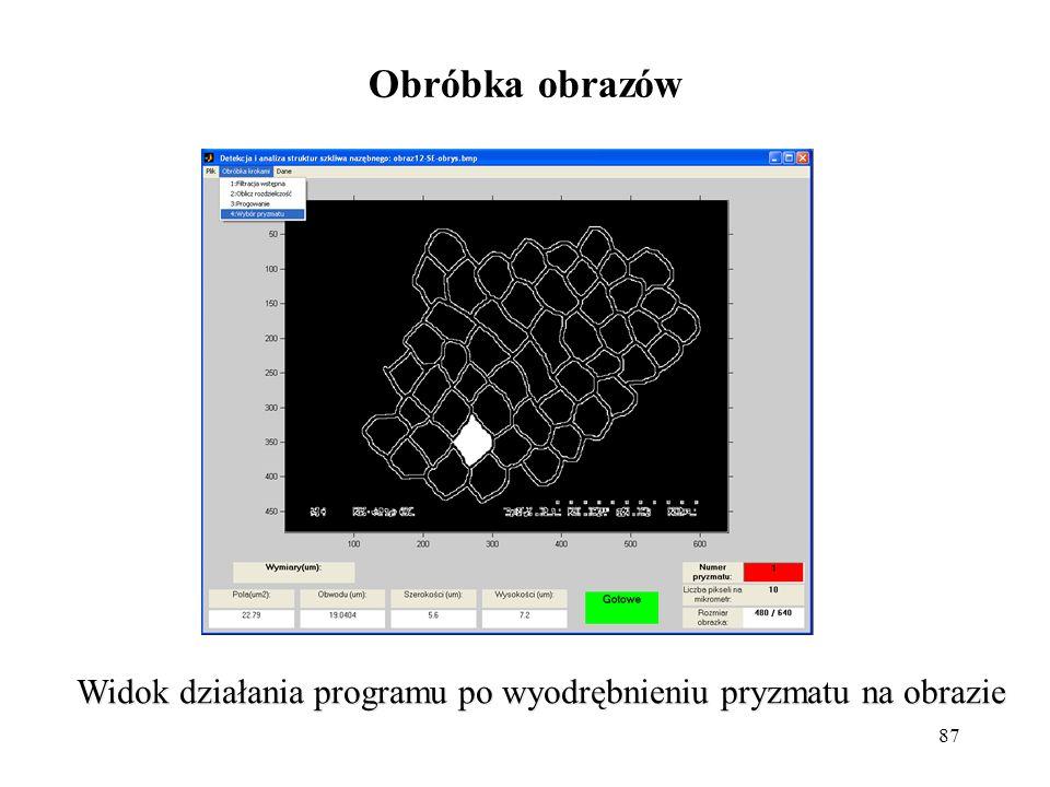 87 Obróbka obrazów Widok działania programu po wyodrębnieniu pryzmatu na obrazie