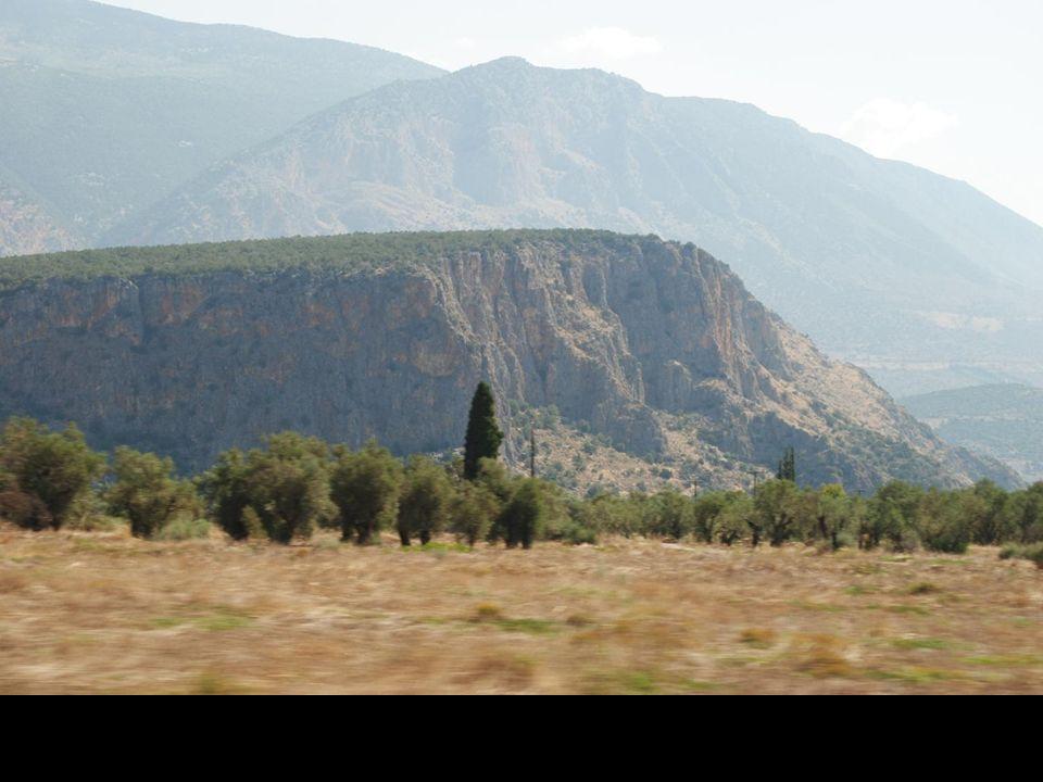 Zdjęcia z jadącego autobusu drogi do Delf
