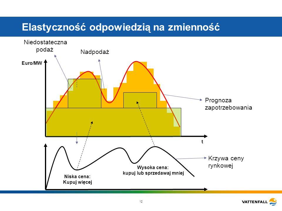 12 Elastyczność odpowiedzią na zmienność t Euro/MW Krzywa ceny rynkowej Prognoza zapotrzebowania Nadpodaż Niedostateczna podaż Niska cena: Kupuj więce