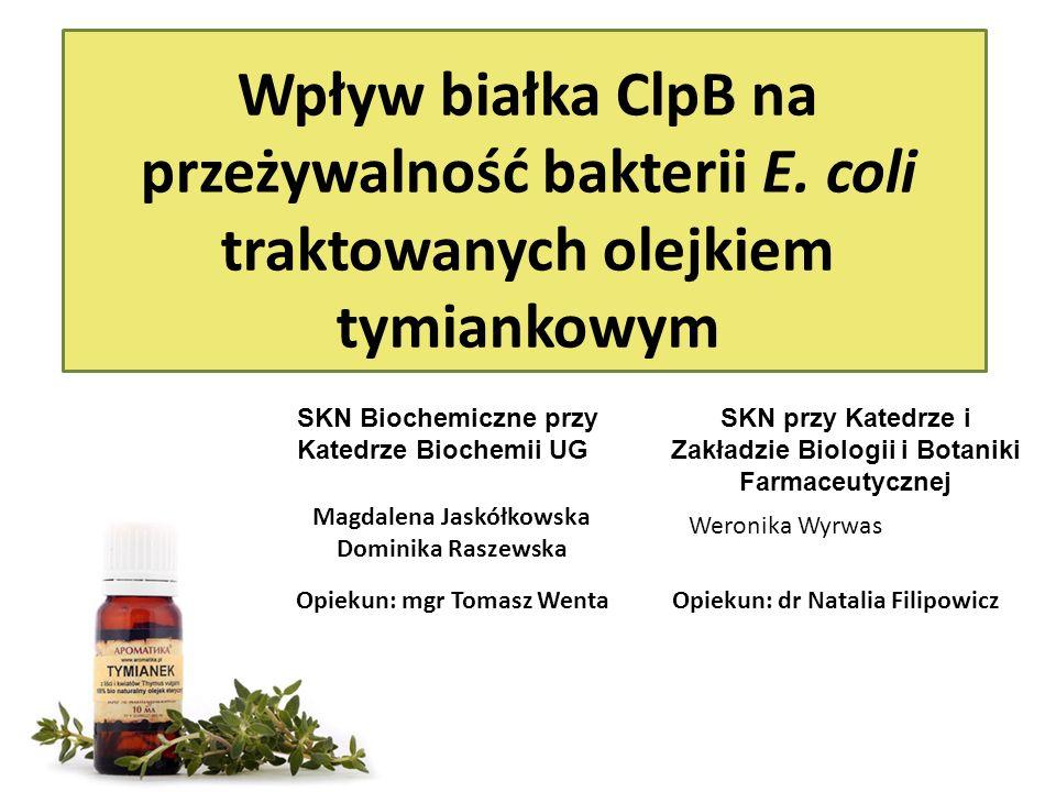 OLEJEK TYMIANKOWY Thymus vulgaris L.