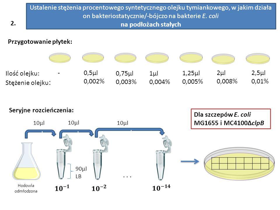 Ustalenie stężenia procentowego syntetycznego olejku tymiankowego, w jakim działa on bakteriostatycznie/-bójczo na bakterie E.