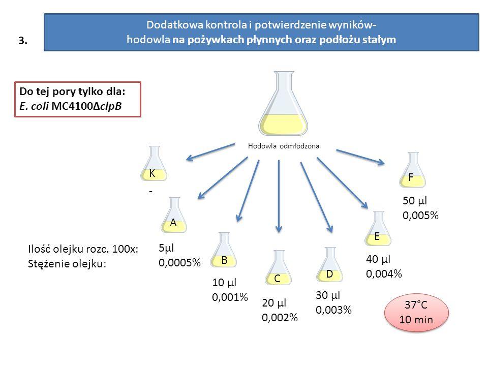 3. Dodatkowa kontrola i potwierdzenie wyników- hodowla na pożywkach płynnych oraz podłożu stałym - 5µl 0,0005% 10 µl 0,001% 30 µl 0,003% 40 µl 0,004%