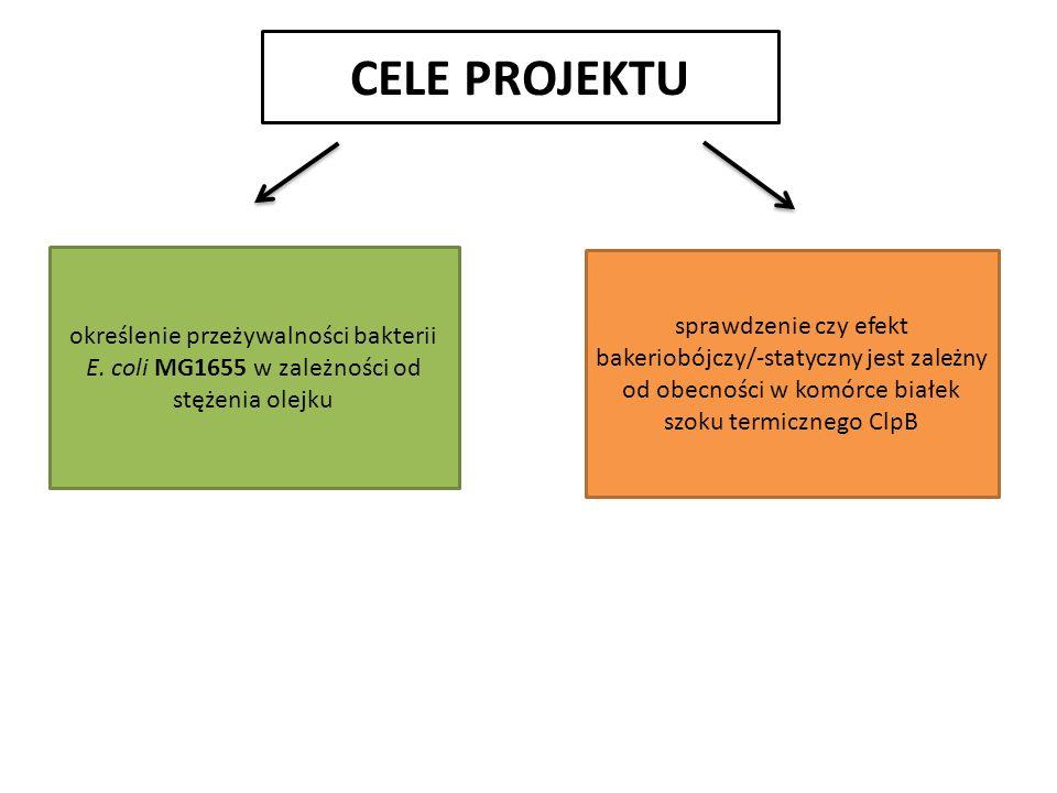 CELE PROJEKTU określenie przeżywalności bakterii E.