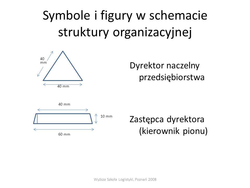 Symbole i figury w schemacie struktury organizacyjnej 40 mm 40 mm 10 mm 60 mm Dyrektor naczelny przedsiębiorstwa Zastępca dyrektora (kierownik pionu) Wyższa Szkoła Logistyki, Poznań 2008