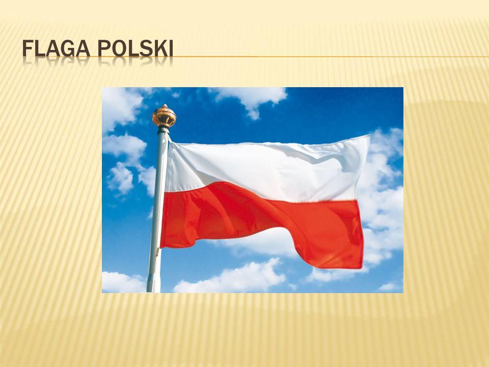 Językiem urzędowym w tym kraju jest język polski.