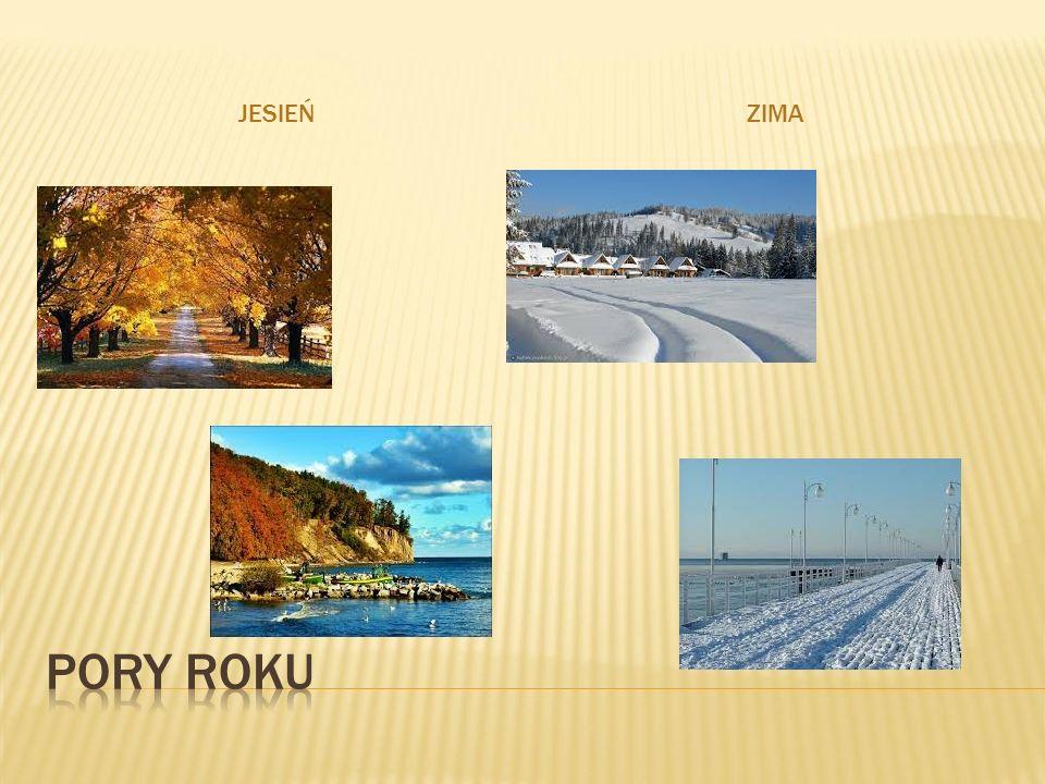  Polska jest krajem zdecydowanie nizinnym.Obszary położone do wysokości 300 m n.p.m.