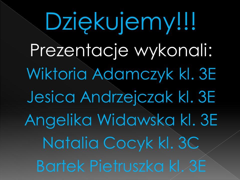 Dziękujemy!!! Prezentacje wykonali: Wiktoria Adamczyk kl. 3E Jesica Andrzejczak kl. 3E Angelika Widawska kl. 3E Natalia Cocyk kl. 3C Bartek Pietruszka