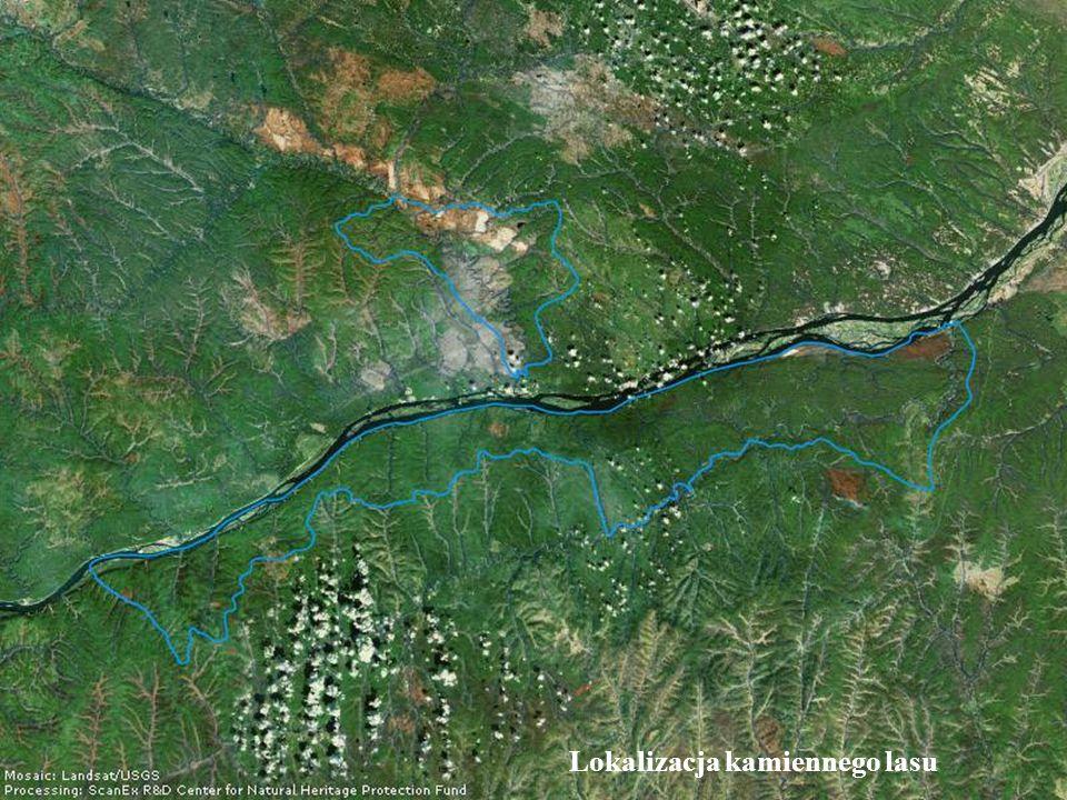 Okoliczny krajobraz krasowy to efekt trwającej wiele tysięcy lat erozji i ginięcia wielu form życia.
