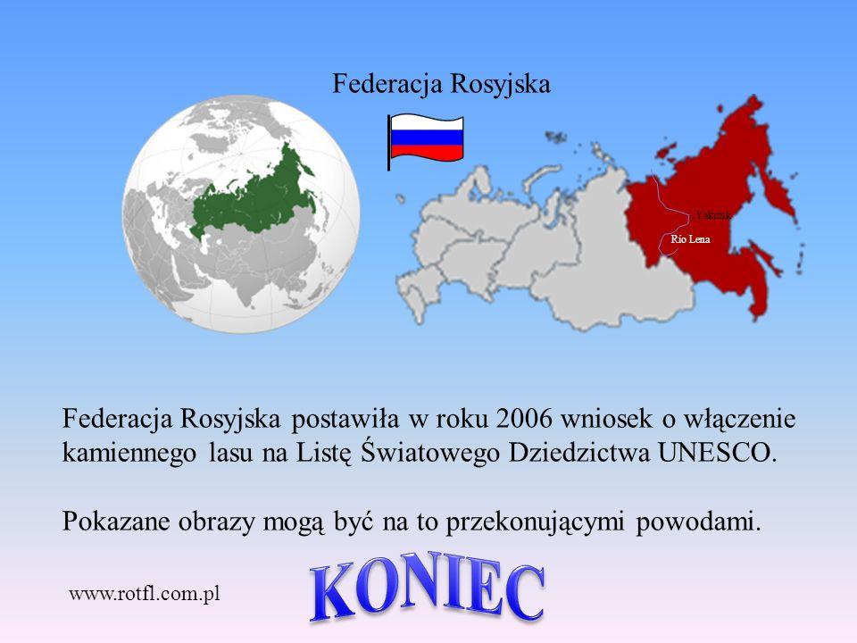 Federacja Rosyjska postawiła w roku 2006 wniosek o włączenie kamiennego lasu na Listę Światowego Dziedzictwa UNESCO.