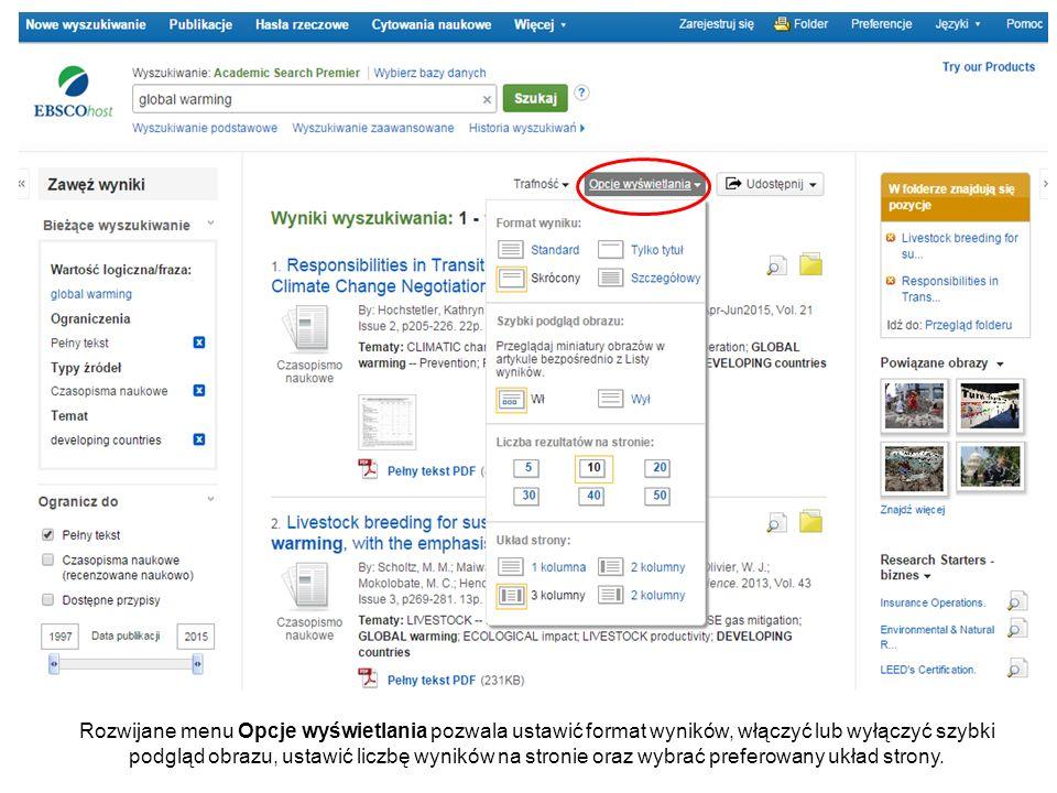 Rozwijane menu Opcje wyświetlania pozwala ustawić format wyników, włączyć lub wyłączyć szybki podgląd obrazu, ustawić liczbę wyników na stronie oraz wybrać preferowany układ strony.