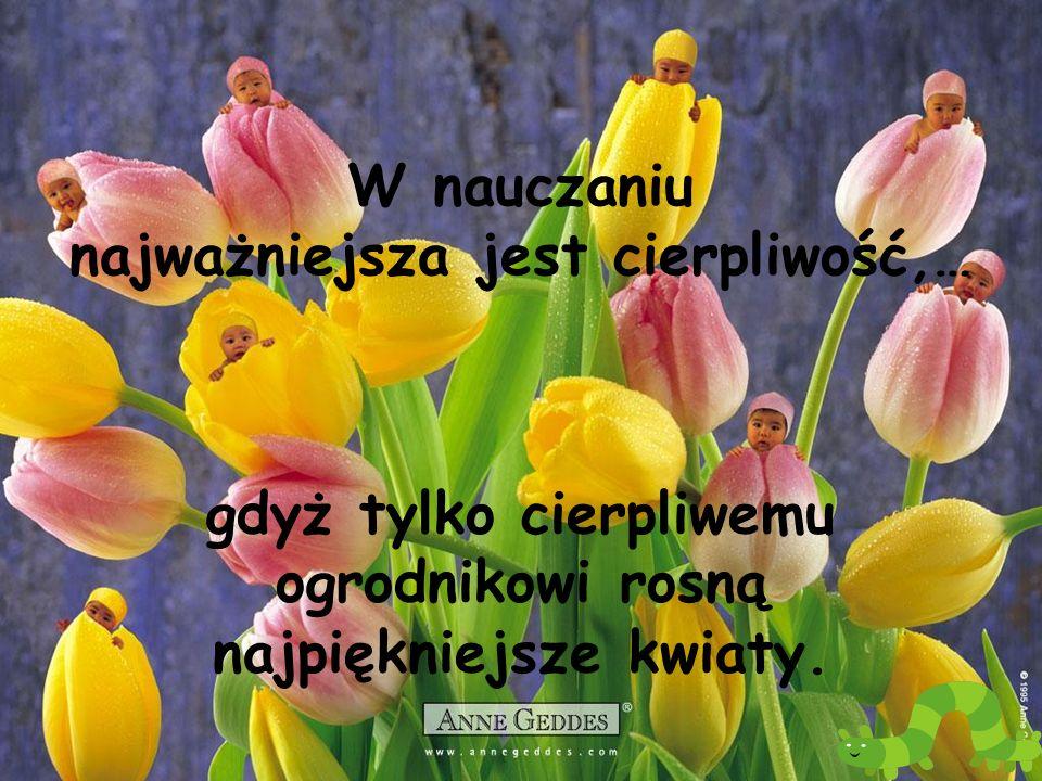 W nauczaniu najważniejsza jest cierpliwość,… gdyż tylko cierpliwemu ogrodnikowi rosną najpiękniejsze kwiaty.