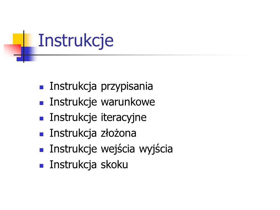Instrukcje Instrukcja przypisania Instrukcje warunkowe Instrukcje iteracyjne Instrukcja złożona Instrukcje wejścia wyjścia Instrukcja skoku
