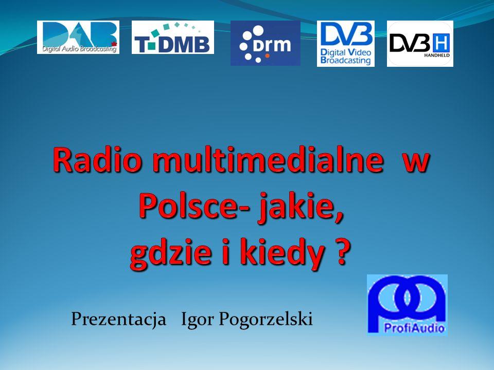 Prezentacja Igor Pogorzelski