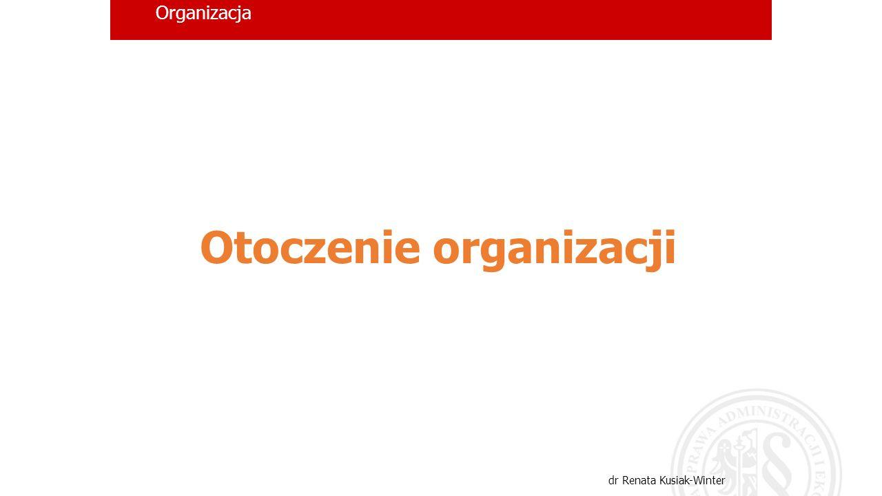 Organizacja dr Renata Kusiak-Winter Otoczenie organizacji