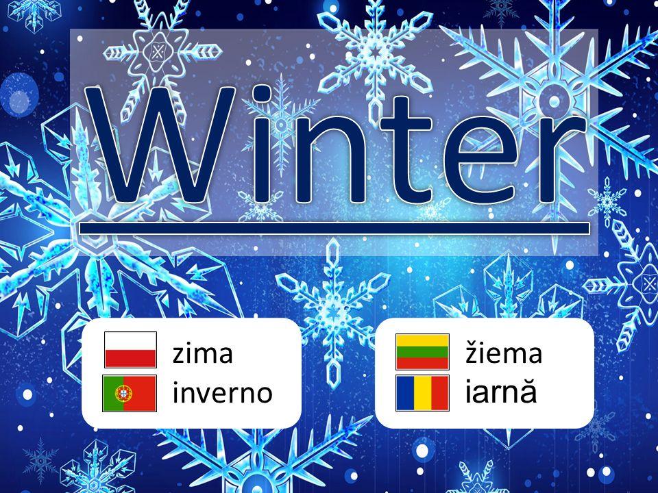 zima inverno žiema iarn ă