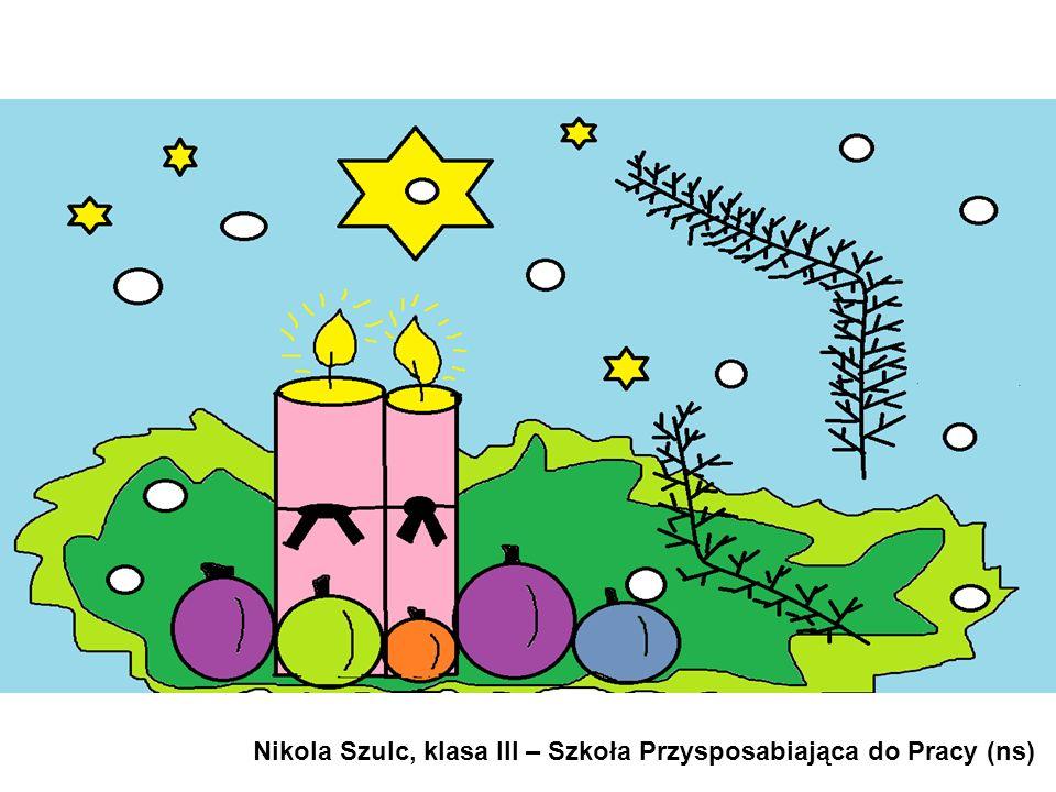 Nikola Szulc, klasa III – Szkoła Przysposabiająca do Pracy (ns)