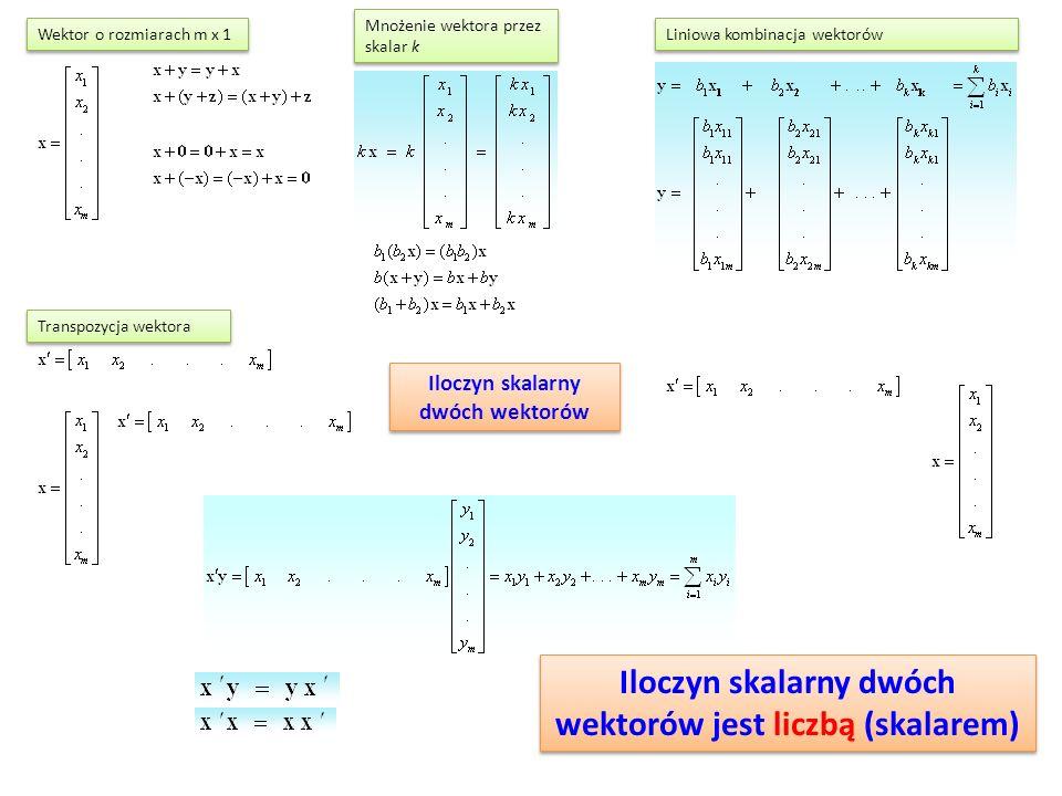 Iloczyn skalarny dwóch wektorów Mnożenie wektora przez skalar k Transpozycja wektora Liniowa kombinacja wektorów Wektor o rozmiarach m x 1 Iloczyn skalarny dwóch wektorów jest liczbą (skalarem)