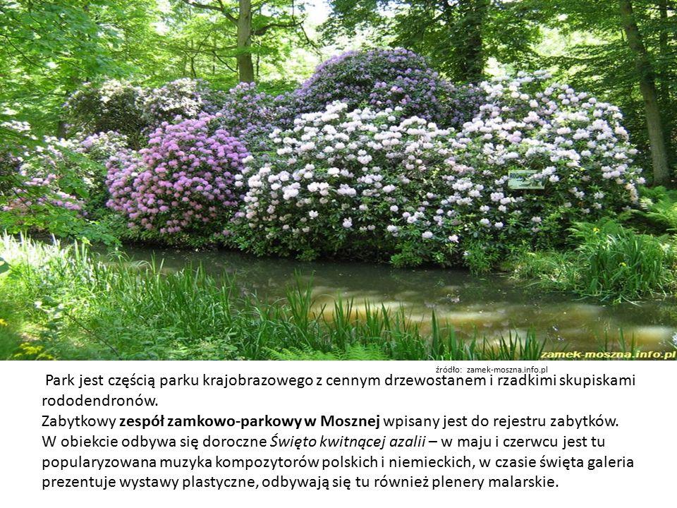 Park jest częścią parku krajobrazowego z cennym drzewostanem i rzadkimi skupiskami rododendronów.