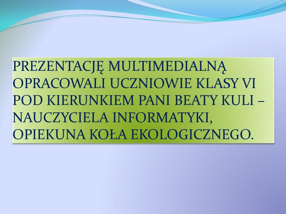 PREZENTACJĘ MULTIMEDIALNĄ OPRACOWALI UCZNIOWIE KLASY VI POD KIERUNKIEM PANI BEATY KULI – NAUCZYCIELA INFORMATYKI, OPIEKUNA KOŁA EKOLOGICZNEGO.