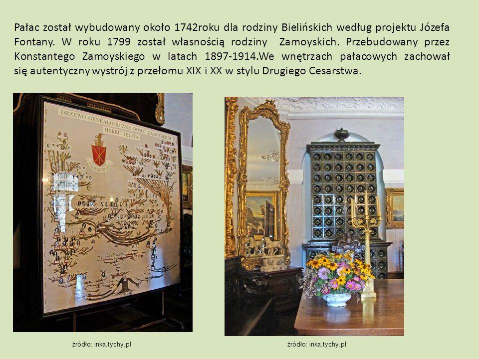 Pałac został wybudowany około 1742roku dla rodziny Bielińskich według projektu Józefa Fontany. W roku 1799 został własnością rodziny Zamoyskich. Przeb